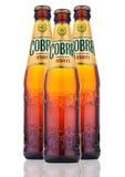 Birra premio della cobra su un fondo bianco Fotografia Stock Libera da Diritti