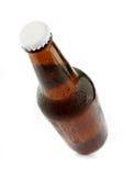 Birra raffreddata fredda in bottiglia marrone Immagini Stock