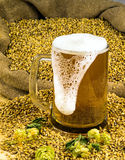 Birra spumosa fresca in un vetro Immagine Stock