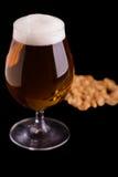 Birra sul nero immagini stock