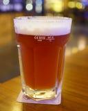 Birra tedesca della bacca Fotografia Stock