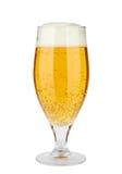 Birra in un vetro Fotografia Stock Libera da Diritti