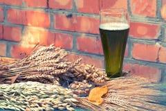 Birra verde, ingredienti, spuntini per il giorno del ` s di Patrick Immagine Stock