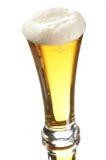 Birra in vetro Fotografia Stock Libera da Diritti