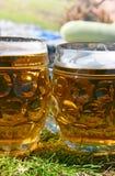 Birre di picnic Immagine Stock