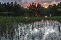 Birsemore or Queens Loch at Aboyne in Scotland. Royalty Free Stock Images
