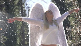 Birth of an Angel stock footage