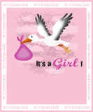 Birth announcement card. Baby girl birth announcement card with a stork carrying a child Royalty Free Stock Photo
