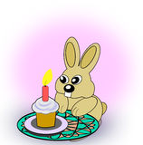Birth Day Rabbit Royalty Free Stock Images