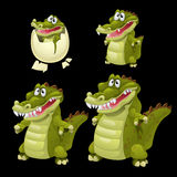 Birth and growth of a crocodile, four stages. Vector icon stock illustration
