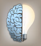 Birth of the idea in the brain. Royalty Free Stock Photo