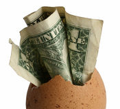 Birth of money. The bill of one dollar in the chicken egg Royalty Free Stock Image