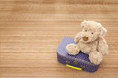 Birth present: teddy bear seated on suitcase Royalty Free Stock Photo