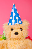 Birthday bear Royalty Free Stock Photo