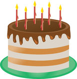 Birthday cake. With candles on the green plate Stock Photos