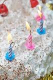 Birthday cake. Stock Photos