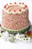 Birthday cake. Very colorful birthday cake covered in confetti on white background Stock Image