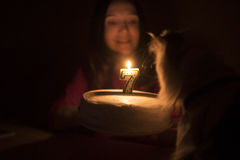 Birthday cake with a candle for a cat Royalty Free Stock Photography