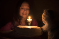 Birthday cake with a candle for a cat Stock Photography