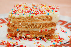 Birthday cake with colorful  sprinkles Stock Photography