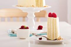 Birthday cake with cream cheese Stock Photos