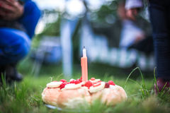 Birthday cake in the park on grass Royalty Free Stock Image