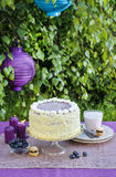 Birthday cake on the table. Garden party Royalty Free Stock Photo