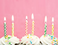 Birthday candles. On freshly made cupcakes with a pink background Stock Photography