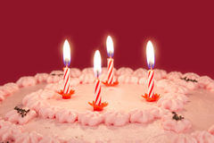 Birthday candles on a cake Stock Images