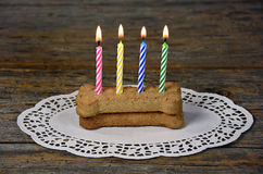 Birthday candles in dog bone Stock Photos