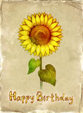 Birthday card. With drawing of sunflower Stock Photo