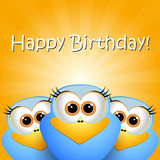 Birthday card with funny birds Stock Images