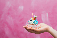 Birthday concept, little cake with one candle in hands. Birthday cupcake with single candle in female hands over pink background.. Holiday concept, greeting card Stock Photo