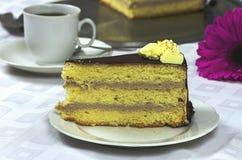 Birthday creamy chocolate cake with gerbera Stock Images