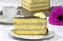 Birthday creamy chocolate cake with gerbera Royalty Free Stock Photos