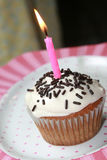 Birthday Cup Cake Royalty Free Stock Photo