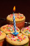Birthday Cupcake. A close up of a vanilla flavored cupcake with sprinkles and a candle on top stock photo