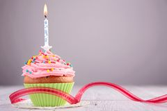 Birthday cupcake. And red ribbon Stock Image