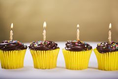 Birthday Cupcake. Row of Birthday Cupcakes with Candles Lighted royalty free stock photos