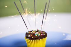 Birthday Cupcake. With Sparklers Lighted royalty free stock photos