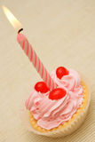 Birthday cupcake. Stock Photo