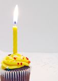 Birthday Cupcake And Candle Stock Images