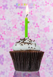Birthday cupcake with candle Stock Image