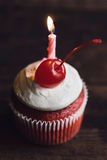 Birthday cupcake with candle Stock Photography