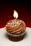 Birthday Cupcake II Stock Photo