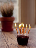 Birthday cupcake with lots of lit candles Royalty Free Stock Image