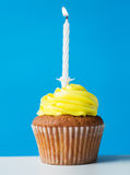Birthday cupcake with one burning candle Royalty Free Stock Photography