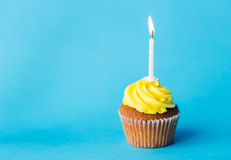 Birthday cupcake with one burning candle Stock Images