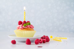 Birthday cupcake with raspberry and candy Stock Images
