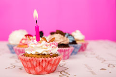 Birthday cupcakes. Stock Images
